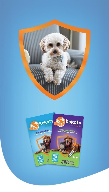banner-kokoty-FAQs-tablet