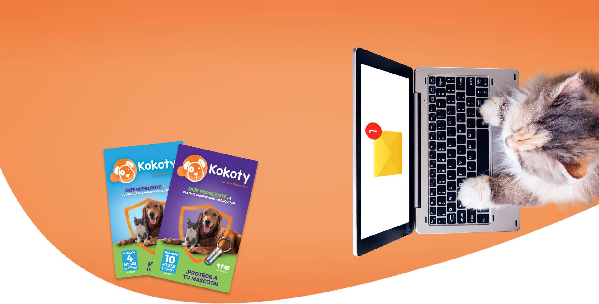 banner-kokoty-contacto-desktop