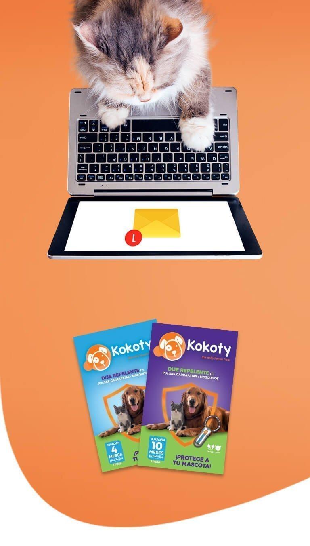 banner-kokoty-contacto-tablet